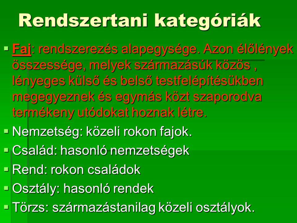 Rendszertani kategóriák  Faj: rendszerezés alapegysége.