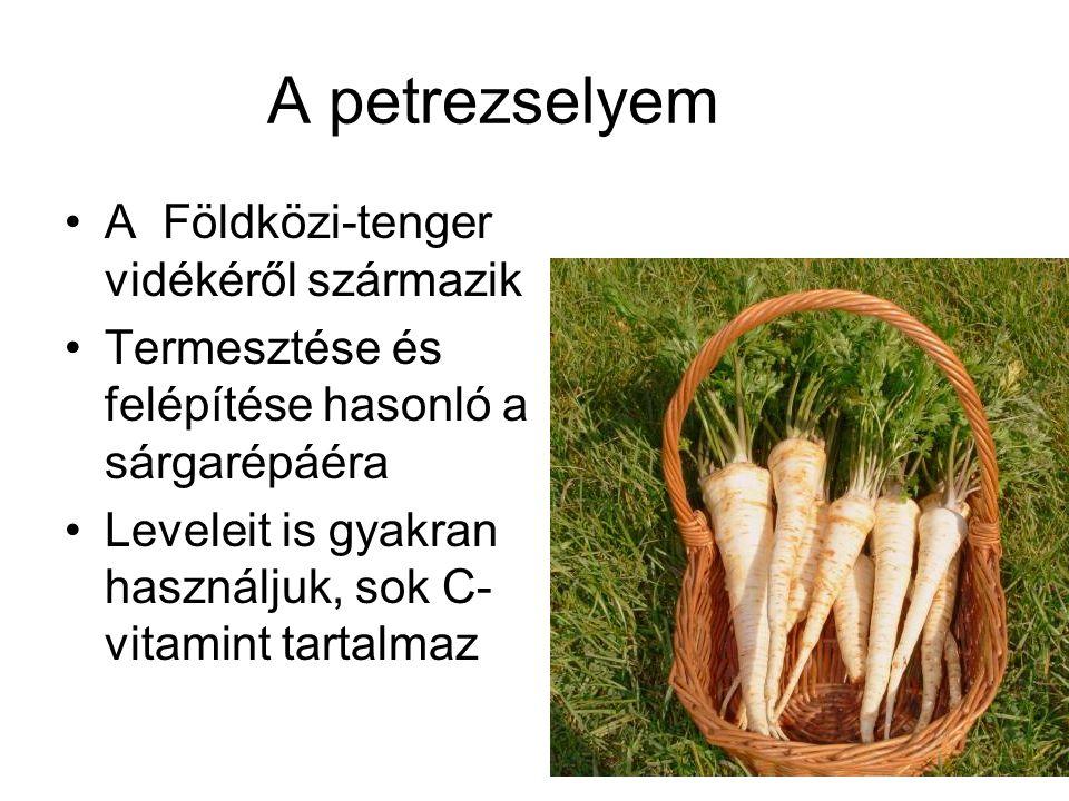 A petrezselyem A Földközi-tenger vidékéről származik Termesztése és felépítése hasonló a sárgarépáéra Leveleit is gyakran használjuk, sok C- vitamint