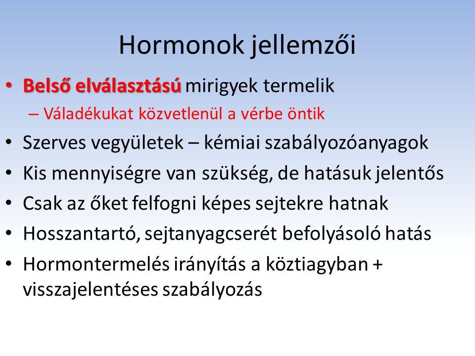 Hormonok jellemzői Belső elválasztású Belső elválasztású mirigyek termelik – Váladékukat közvetlenül a vérbe öntik Szerves vegyületek – kémiai szabály