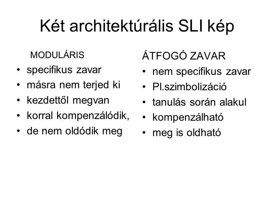 Két architektúrális SLI kép MODULÁRIS specifikus zavar másra nem terjed ki kezdettől megvan korral kompenzálódik, de nem oldódik meg ÁTFOGÓ ZAVAR nem