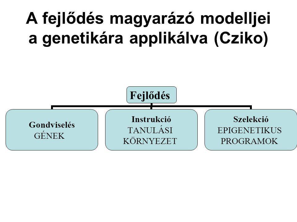 A fejlődés magyarázó modelljei a genetikára applikálva (Cziko) Fejlődés Gondviselés GÉNEK Instrukció TANULÁSI KÖRNYEZET Szelekció EPIGENETIKUS PROGRAM