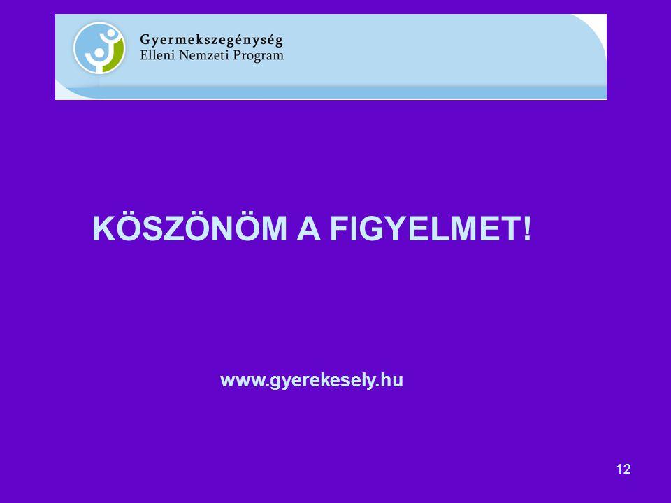 12 KÖSZÖNÖM A FIGYELMET! www.gyerekesely.hu