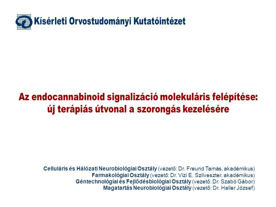 (1) A szabadalmi bejelentés a fent felvázolt, és itt be nem mutatott kutatási eredményeken alapul (2) A szabadalom tárgyát képező vegyület jellegére vonatkozóan nem adhatók ki információk; (3) A készítményt itt A anyagnak fogjuk nevezni 150 100 50 0 100 A 0.5 mg/kg A 1 mg/kg A 1.5 mg/kg (b) A 2 mg/kg (a) A 3 mg/kg (b) A 6 mg/kg (b) * * * Kontrollhoz mért százalékos különbség ZKbNYi%NYb 150 100 50 0 100 CDP 2 mg/kg CDP 3 mg/kg CDP 5 mg/kg CDP 10 mg/kg * * * * * * ZKbNYi%NYb traumának nem kitett kontroll traumának kitett, kontroll kezelés traumának kitett, A anyag idő % 100 80 60 40 20 0 Exploráció Dermedés * * * * # # kontroll A anyag 15 10 5 0 PIHSZOAGR * idő % Az itt felvázolt kutatás a szorongás terápiájának új megközeléítéséhez vezetett, ami a gyakorlatban alkalmazható gyógykészítményben konkretizálódik (remélhetőleg rövidesen) Konficionált félelem teszt
