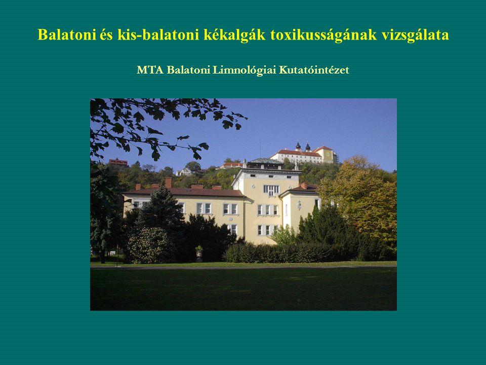 Célkitűzés A Balaton, valamint a Kis-Balaton tározón 2006 év során észlelt cianobaktérium tömegprodukció általános toxicitásának vizsgálata.A Balaton, valamint a Kis-Balaton tározón 2006 év során észlelt cianobaktérium tömegprodukció általános toxicitásának vizsgálata.