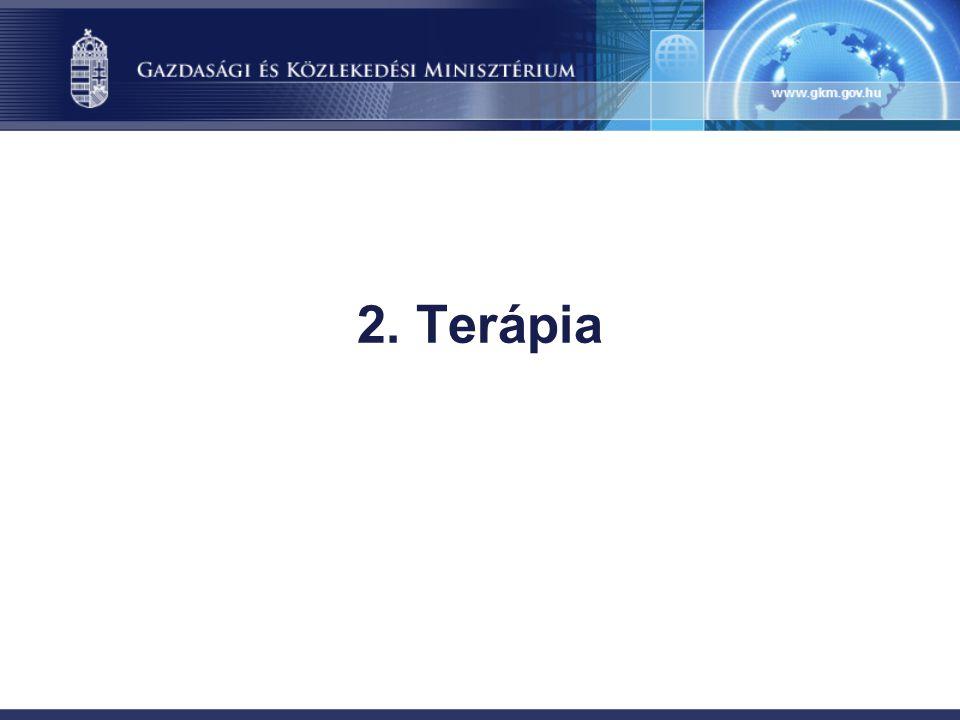 2. Terápia