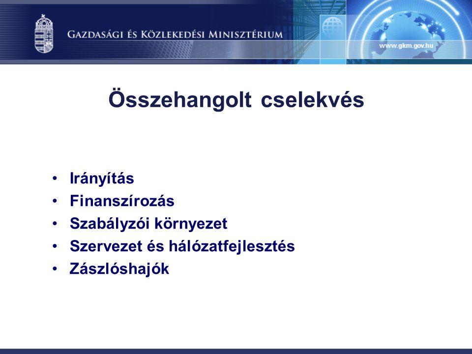 Összehangolt cselekvés Irányítás Finanszírozás Szabályzói környezet Szervezet és hálózatfejlesztés Zászlóshajók