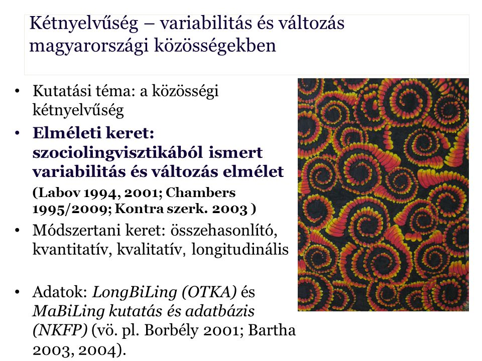 Kétnyelvűség – variabilitás és változás magyarországi közösségekben Borbély Anna Kutatási téma: a közösségi kétnyelvűség Elméleti keret: szociolingvis