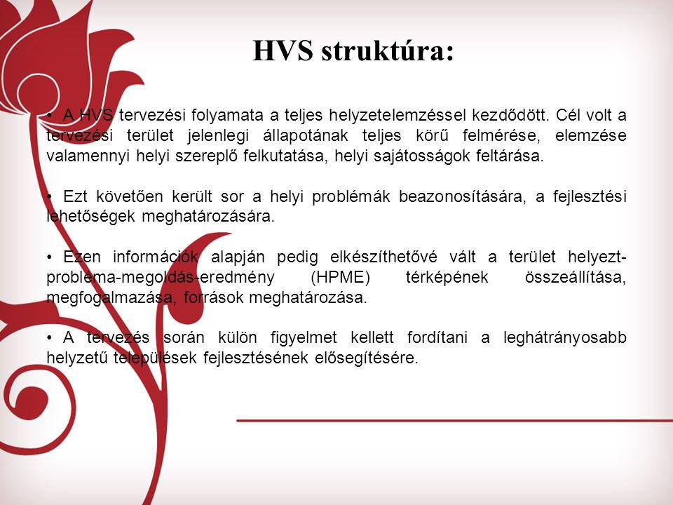 HVS struktúra: A HVS tervezési folyamata a teljes helyzetelemzéssel kezdődött. Cél volt a tervezési terület jelenlegi állapotának teljes körű felmérés