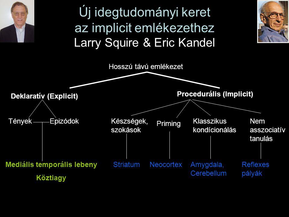 Új idegtudományi keret az implicit emlékezethez Larry Squire & Eric Kandel Hosszú távú emlékezet Deklaratív (Explicit) TényekEpizódok Mediális temporá