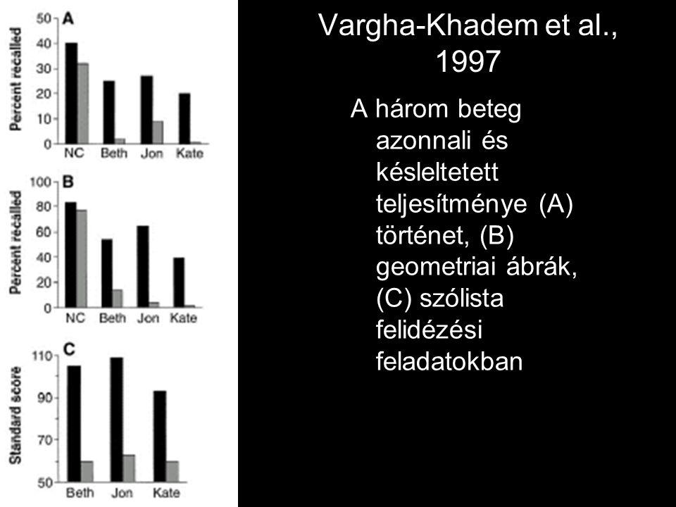 Vargha-Khadem et al., 1997 A három beteg azonnali és késleltetett teljesítménye (A) történet, (B) geometriai ábrák, (C) szólista felidézési feladatokb