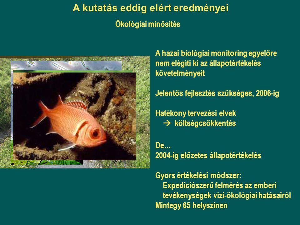 Ökológiai minősítés A hazai biológiai monitoring egyelőre nem elégíti ki az állapotértékelés követelményeit Jelentős fejlesztés szükséges, 2006-ig Hat