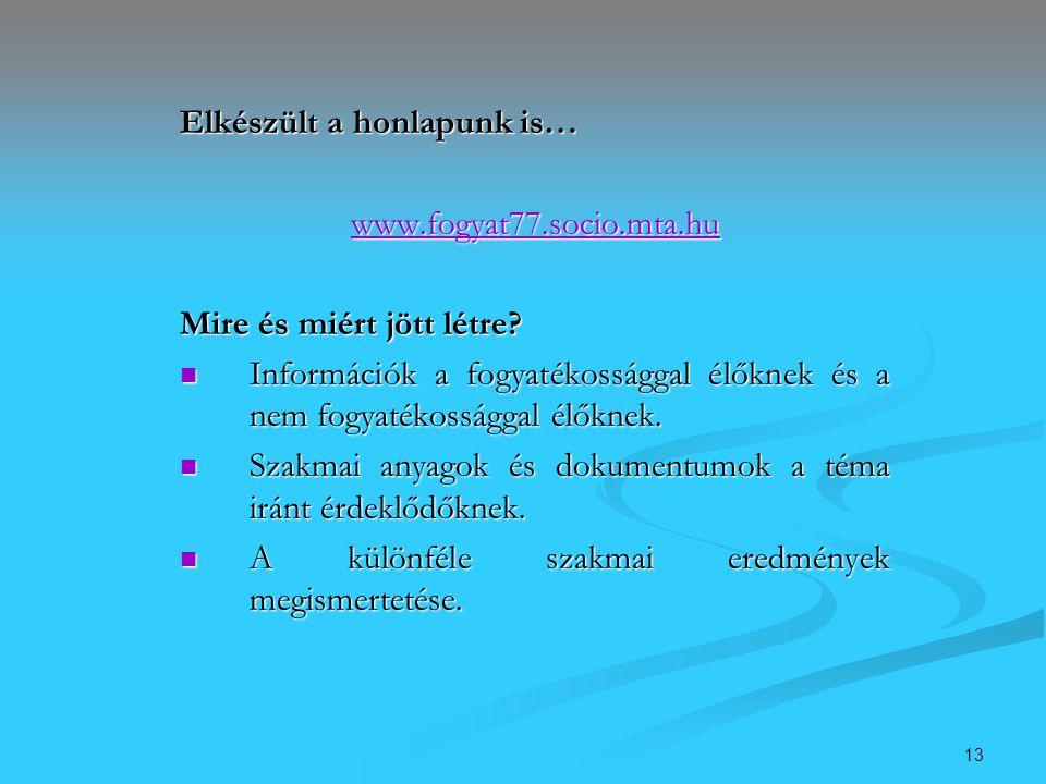 13 Elkészült a honlapunk is… www.fogyat77.socio.mta.hu Mire és miért jött létre? Információk a fogyatékossággal élőknek és a nem fogyatékossággal élők