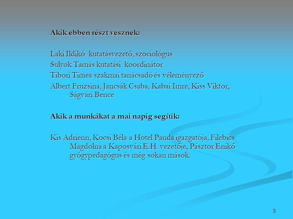 3 Akik ebben részt vesznek: Laki Ildikó kutatásvezető, szociológus Sulyok Tamás kutatási koordinátor Tibori Tímea szakmai tanácsadó és véleményező Alb