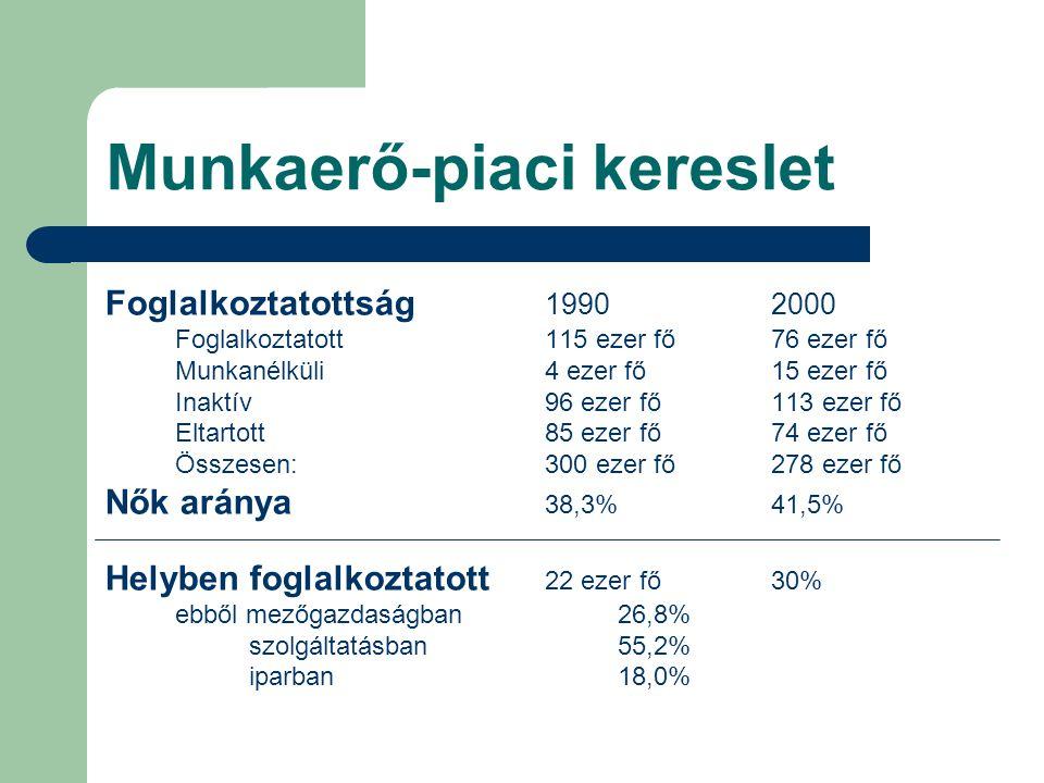 Munkaerő-piaci kereslet Foglalkoztatottság 19902000 Foglalkoztatott115 ezer fő76 ezer fő Munkanélküli4 ezer fő15 ezer fő Inaktív96 ezer fő113 ezer fő
