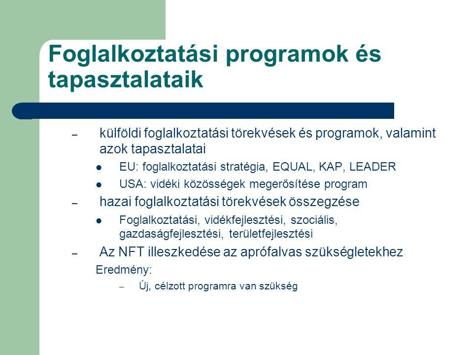 Foglalkoztatási programok és tapasztalataik – külföldi foglalkoztatási törekvések és programok, valamint azok tapasztalatai EU: foglalkoztatási straté