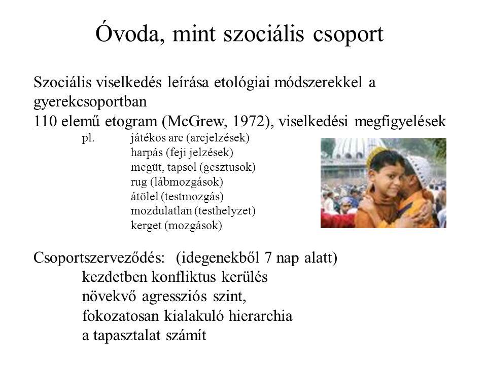 Óvoda, mint szociális csoport Szociális viselkedés leírása etológiai módszerekkel a gyerekcsoportban 110 elemű etogram (McGrew, 1972), viselkedési megfigyelések pl.