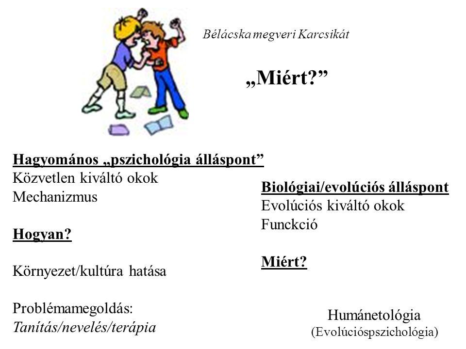 """Bélácska megveri Karcsikát """"Miért? Hagyomános """"pszichológia álláspont Közvetlen kiváltó okok Mechanizmus Hogyan."""