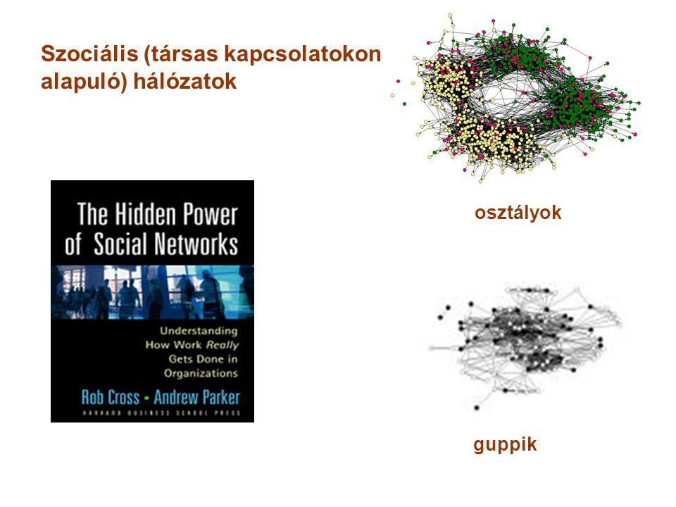 Szociális (társas kapcsolatokon alapuló) hálózatok osztályok guppik