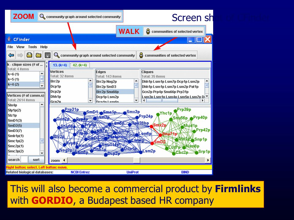 Screen shot of CFinder This will also become a commercial product by Firmlinks with GORDIO, a Budapest based HR company