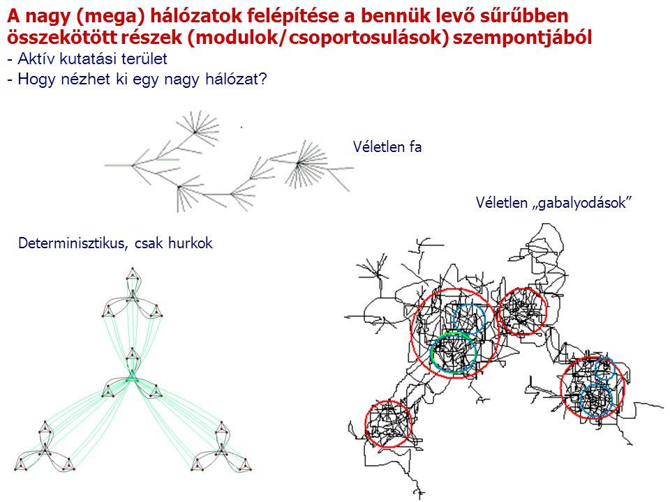 A nagy (mega) hálózatok felépítése a bennük levő sűrűbben összekötött részek (modulok/csoportosulások) szempontjából - Aktív kutatási terület - Hogy nézhet ki egy nagy hálózat.