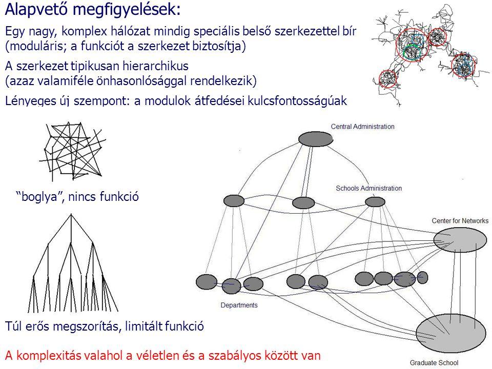 Alapvető megfigyelések: Egy nagy, komplex hálózat mindig speciális belső szerkezettel bír (moduláris; a funkciót a szerkezet biztosítja) A szerkezet t