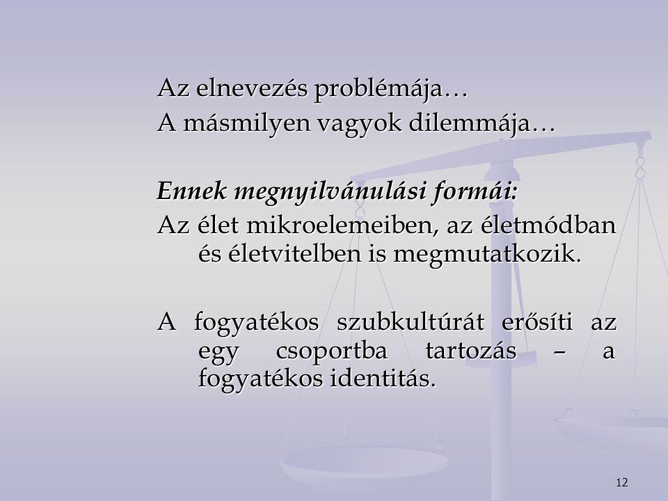 12 Az elnevezés problémája… A másmilyen vagyok dilemmája… Ennek megnyilvánulási formái: Az élet mikroelemeiben, az életmódban és életvitelben is megmutatkozik.