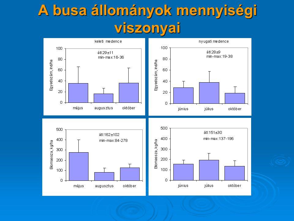 A busa állományok mennyiségi viszonyai