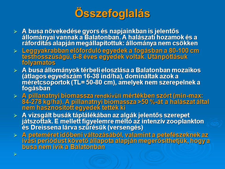 Összefoglalás  A busa növekedése gyors és napjainkban is jelentős állományai vannak a Balatonban. A halászati hozamok és a ráfordítás alapján megálla