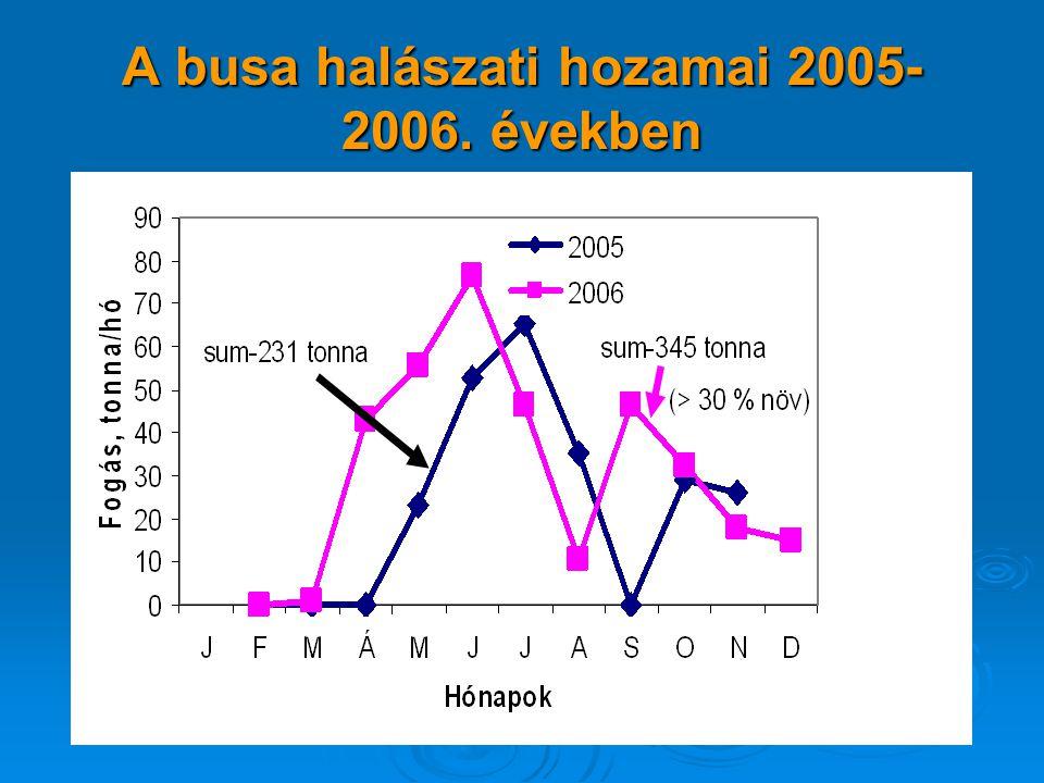 A busa halászati hozamai 2005- 2006. években