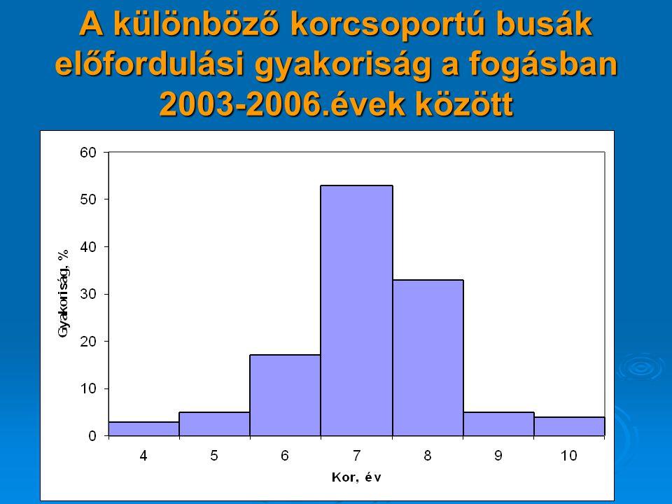 A különböző korcsoportú busák előfordulási gyakoriság a fogásban 2003-2006.évek között