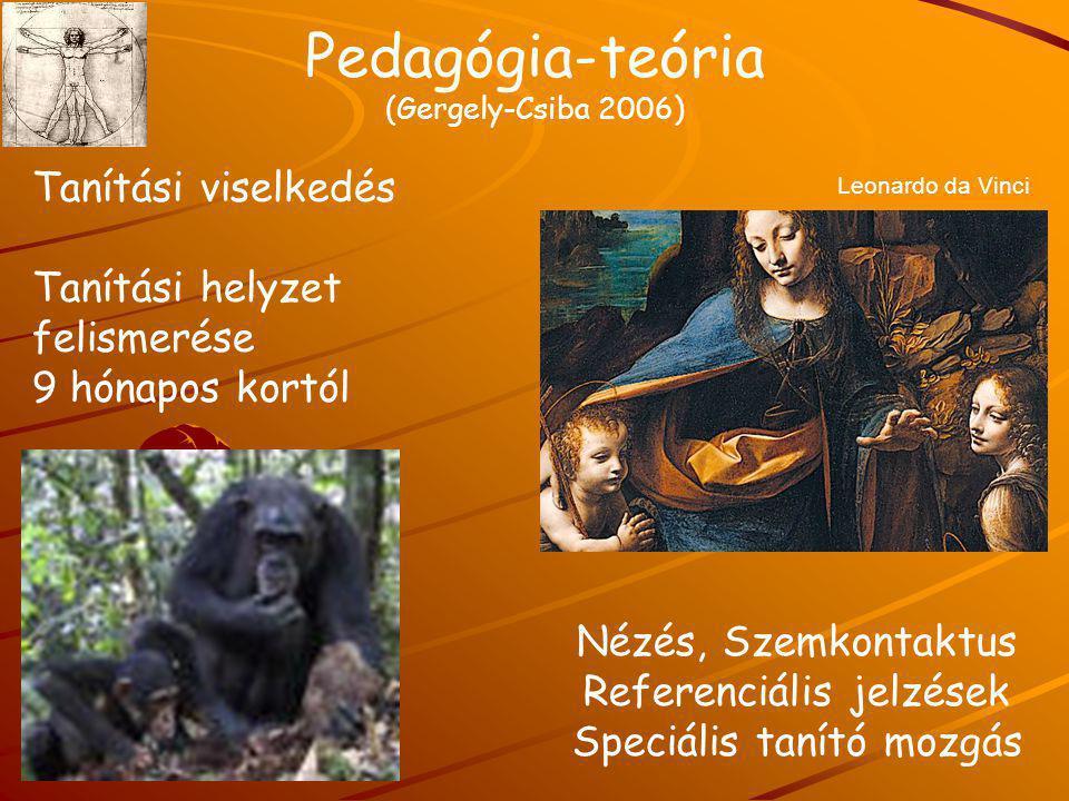 Pedagógia-teória (Gergely-Csiba 2006) Nézés, Szemkontaktus Referenciális jelzések Speciális tanító mozgás Tanítási viselkedés Tanítási helyzet felisme