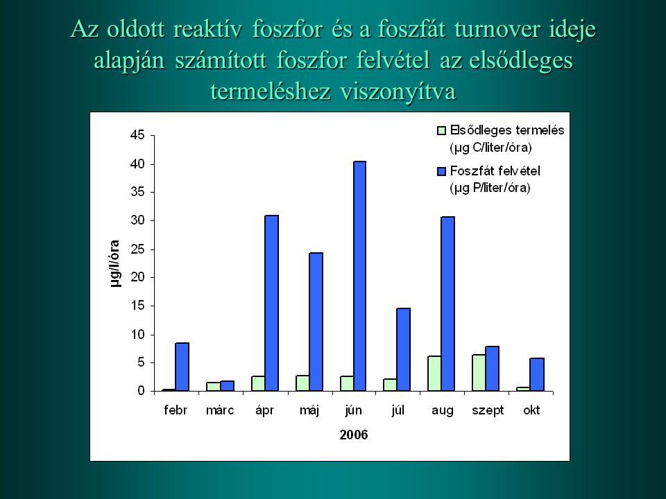 Az oldott reaktív foszfor és a foszfát turnover ideje alapján számított foszfor felvétel az elsődleges termeléshez viszonyítva
