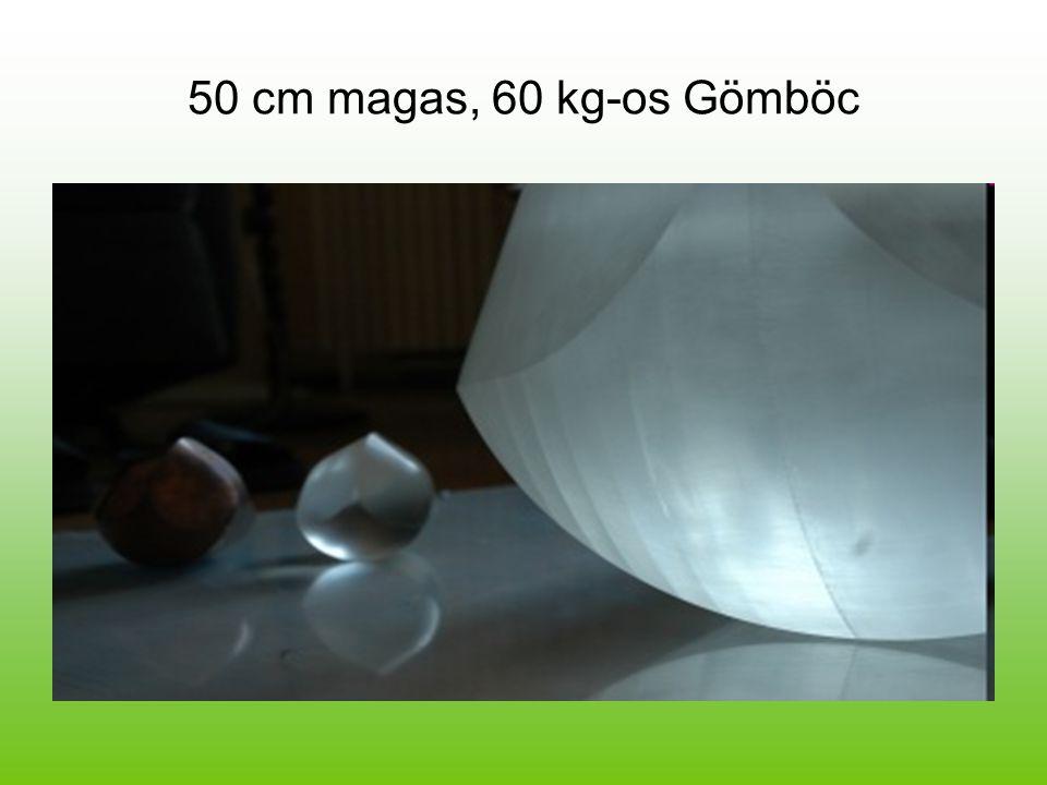 50 cm magas, 60 kg-os Gömböc
