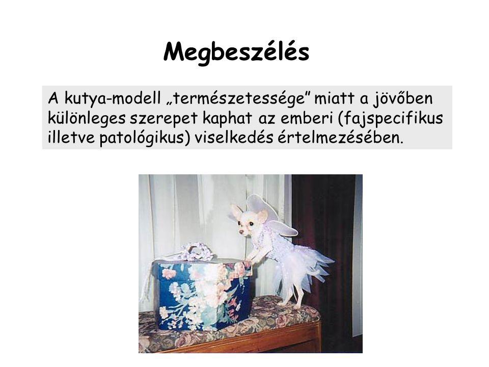 """Megbeszélés A kutya-modell """"természetessége miatt a jövőben különleges szerepet kaphat az emberi (fajspecifikus illetve patológikus) viselkedés értelmezésében."""