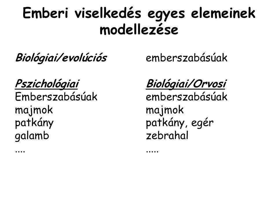 Emberi viselkedés egyes elemeinek modellezése Biológiai/evolúciósemberszabásúak PszichológiaiBiológiai/Orvosi Emberszabásúakemberszabásúakmajmok patkánypatkány, egér galambzebrahal.........