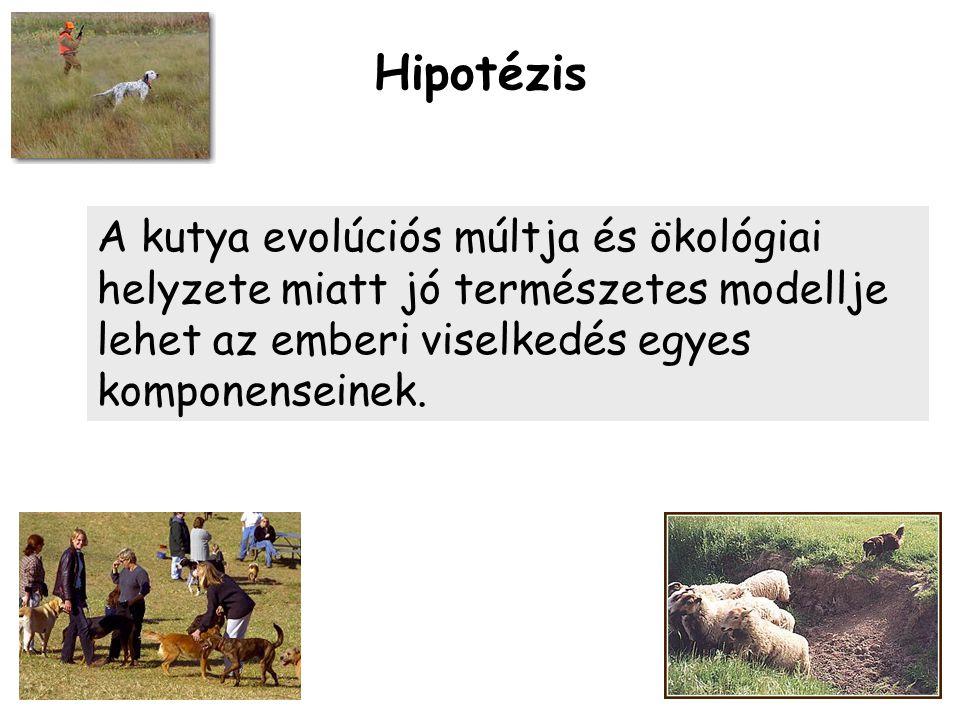 Hipotézis A kutya evolúciós múltja és ökológiai helyzete miatt jó természetes modellje lehet az emberi viselkedés egyes komponenseinek.
