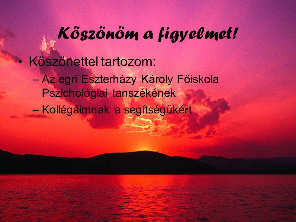 Összefoglalás A morfológiai előfeszítést a magyarban nem befolyásolja jelentősen, hogy –Ragozott-szótő vagy fordított irányú az előfeszítés –Auditoros