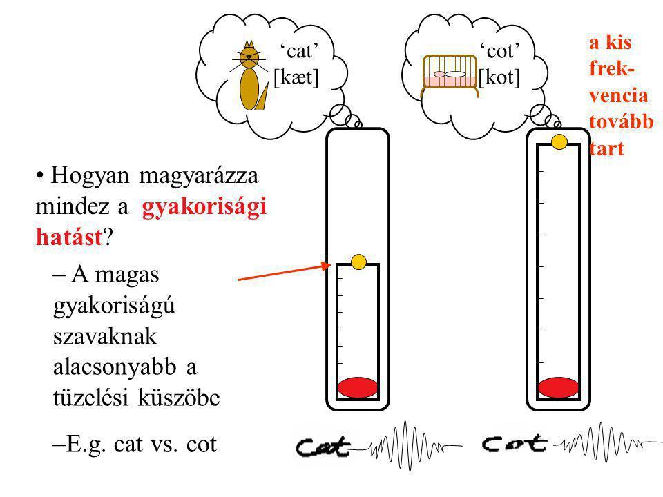 1.Szógyakoriság Nagy gyakoriságú szavak = megszokott szavak ( macska, anya, ház ) Kis gyakoriságú szavak = szokatlan szavak ( harmonika,abakusz ) Mi befolyásolja a lexikális hozzáférés idejét.