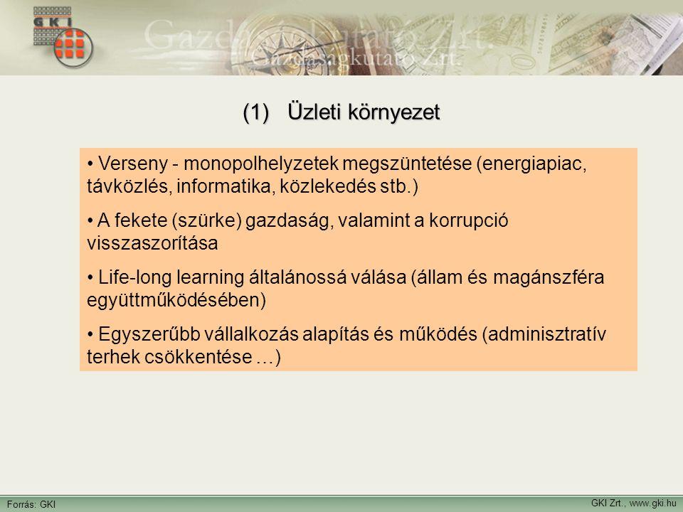 GKI Zrt., www.gki.hu Forrás: GKI (2) Adózás  Valamivel kisebb adóteher  (kisebb és más szerkezetű állami kiadások, széles adóbázis)  Kevesebb adófajta, stabilitás, átláthatóság  Szigorú ellenőrzés, kemény szankciók  Kevés és célzott kedvezmények