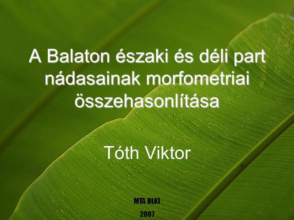 A Balaton északi és déli part nádasainak morfometriai összehasonlítása Tóth Viktor MTA BLKI 2007