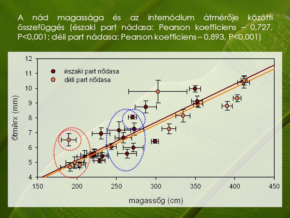 A nád magassága és az internódium átmérője közötti összefüggés (északi part nádasa: Pearson koefficiens – 0,727, P<0,001; déli part nádasa: Pearson koefficiens – 0,893, P<0,001)