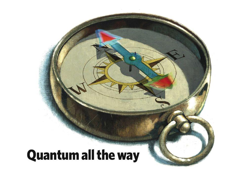 DEKOHERENCIA ÉS KÖRNYEZETI ZAJ KOLLAPSZUS ÉS VIDÉKE BOHMIAN MECHANICS SPONTÁN KOLAPSZUS A GRAVITÁCIÓS VONAL A Schrödinger-egyenlet világán belül : A Schrödinger-egyenleten túllépve :