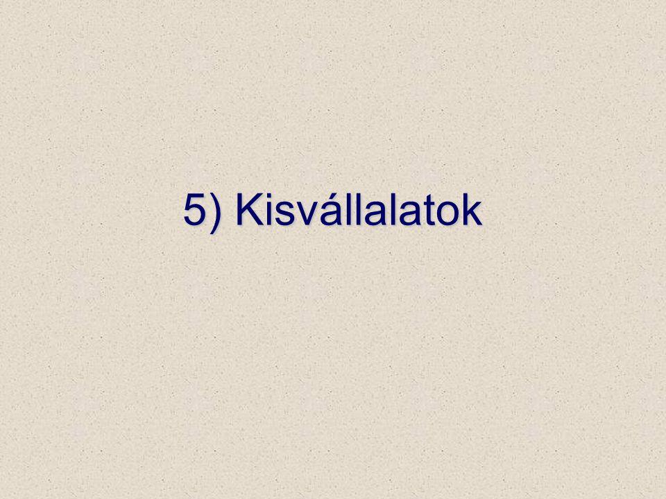 5) Kisvállalatok
