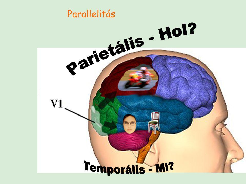 Parallelitás