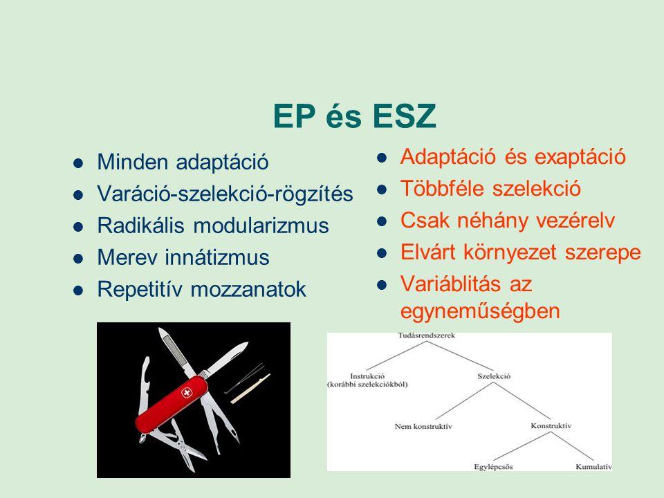 EP és ESZ Minden adaptáció Varáció-szelekció-rögzítés Radikális modularizmus Merev innátizmus Repetitív mozzanatok Adaptáció és exaptáció Többféle sze