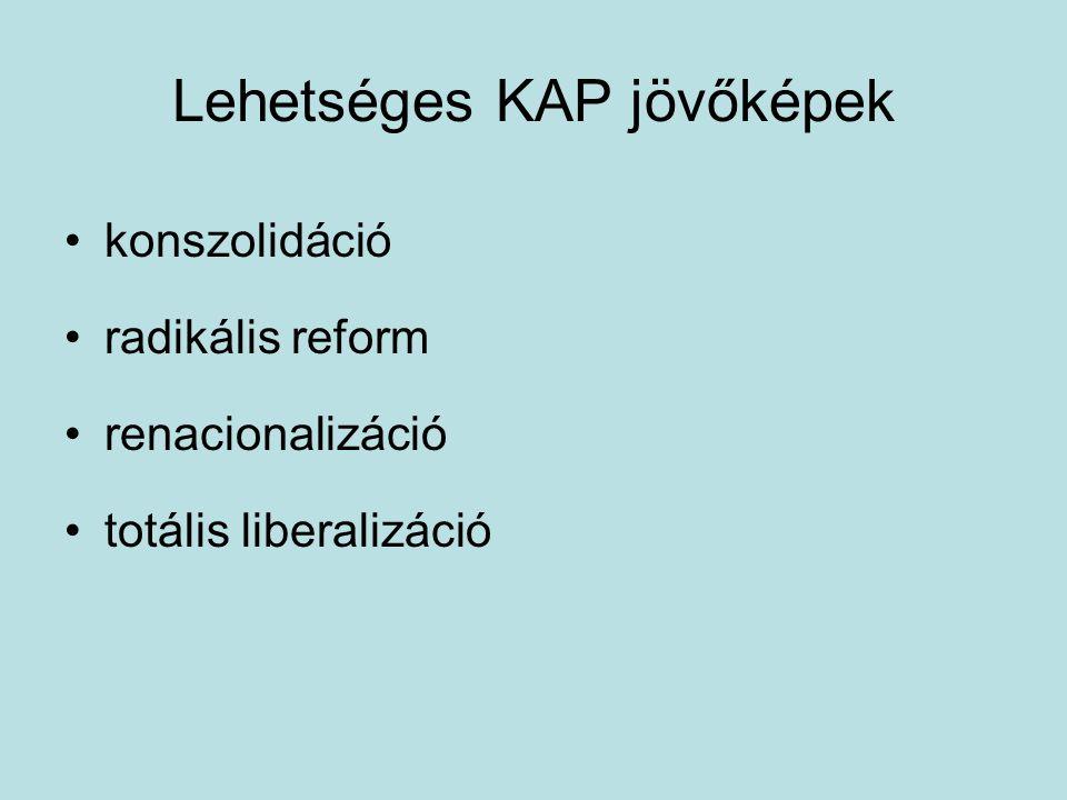 Lehetséges KAP jövőképek konszolidáció radikális reform renacionalizáció totális liberalizáció
