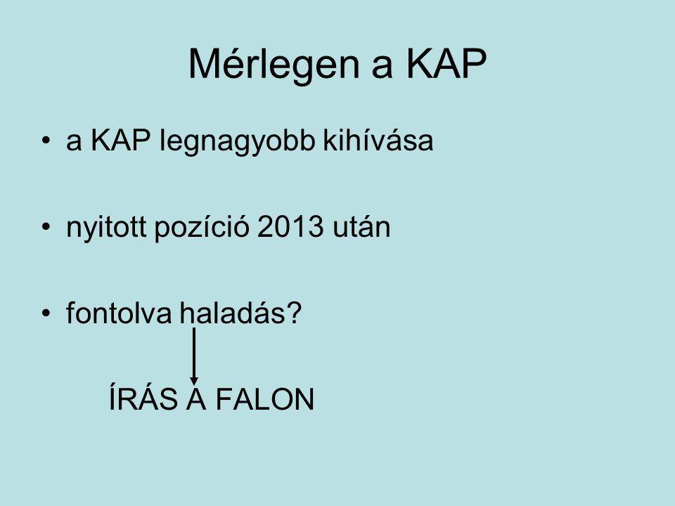 Mérlegen a KAP a KAP legnagyobb kihívása nyitott pozíció 2013 után fontolva haladás ÍRÁS A FALON