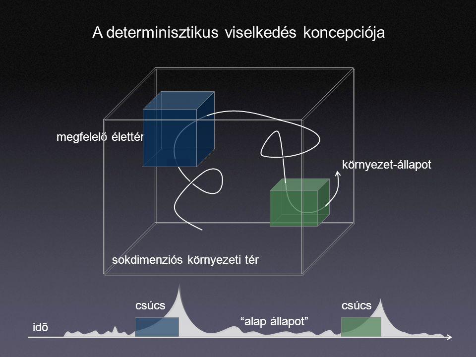 csúcs alap állapot megfelelő élettér A determinisztikus viselkedés koncepciója sokdimenziós környezeti tér környezet-állapot idõ