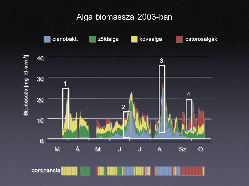 Alga biomassza 2003-ban cianobakt.zöldalgaostorosalgákkovaalga dominancia 0 0 10 20 30 40 M M Á Á M M J J J J A A Sz O O Biomassza [mg kl-a m -3 ] 1 2 3 4