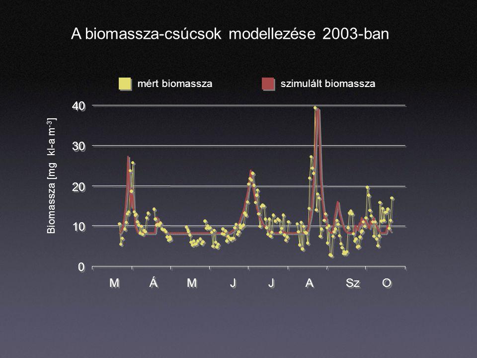 A biomassza-csúcsok modellezése 2003-ban 0 0 10 20 30 40 M M Á Á M M J J J J A A Sz O O szimulált biomasszamért biomassza Biomassza [mg kl-a m -3 ]